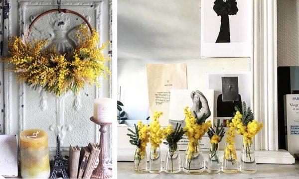 10 idées déco pour adopter le mimosa, la fleur qui vous apporte du soleil en hiver
