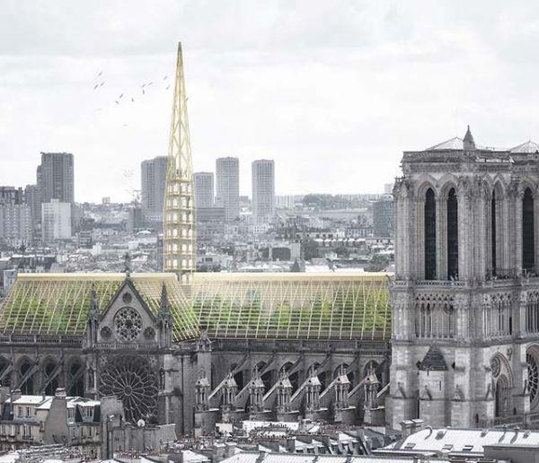 Des projets écolos et citoyens pour reconstruire Notre-Dame de Paris