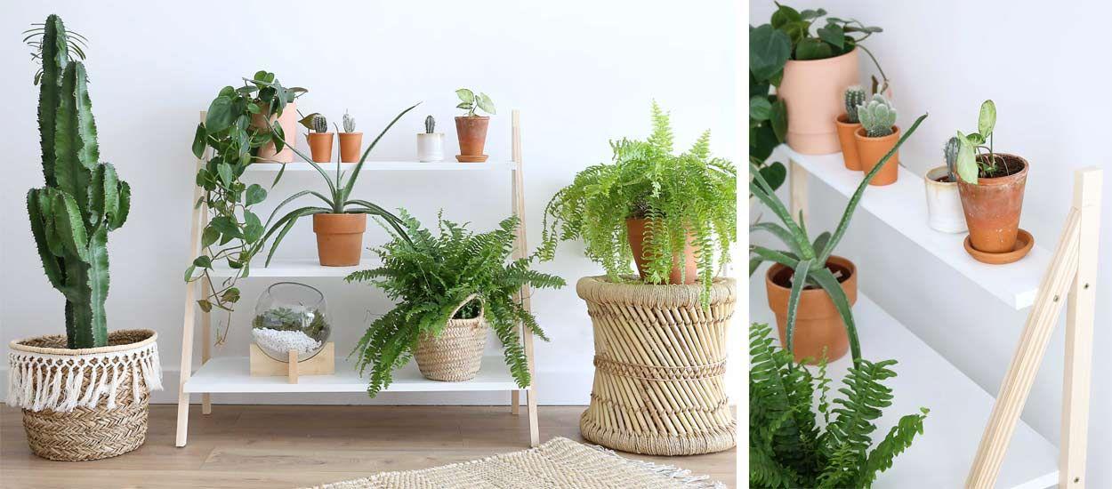 Tuto : Fabriquez une étagère pour vos plantes en moins de deux heures !