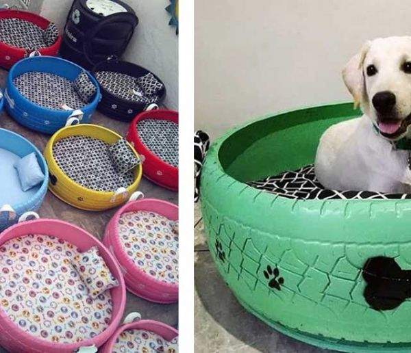 Ce Brésilien transforme des pneus usagés en panier pour nos animaux domestiques