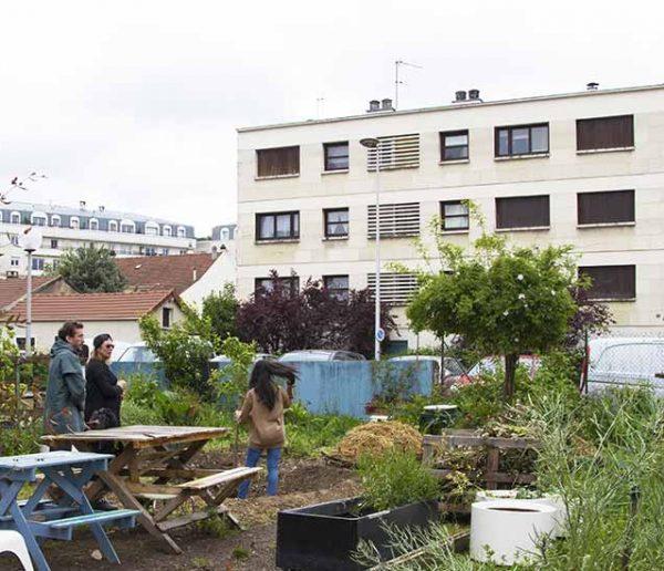 5 bonnes raisons de vous motiver et de rejoindre un jardin partagé