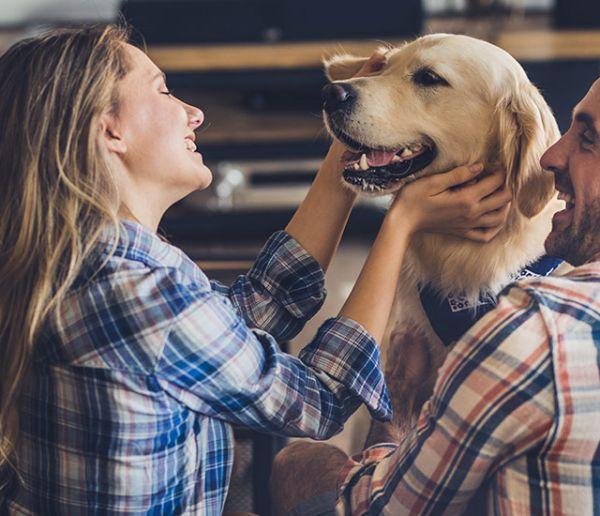 Comment convaincre son conjoint d'avoir un chien ?