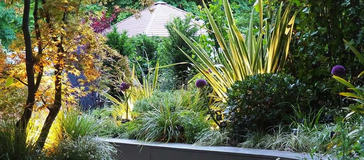 3 conseils d'éclairage pour mettre en valeur vos plantes dans le jardin