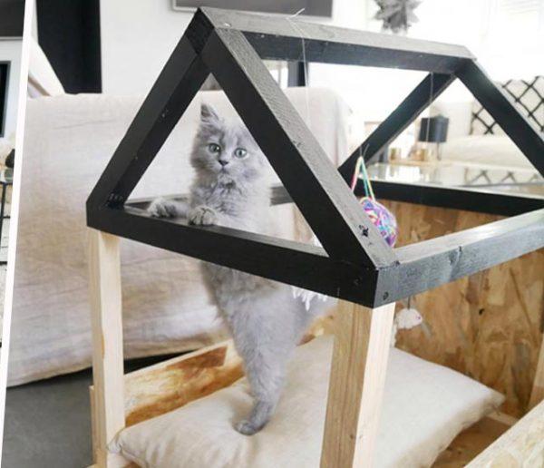 Tuto : Fabriquez un adorable lit cabane pour votre chat !