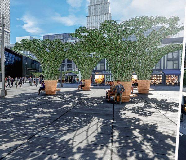 Ils installent des canopées végétales en ville pour combattre les îlots de chaleur !