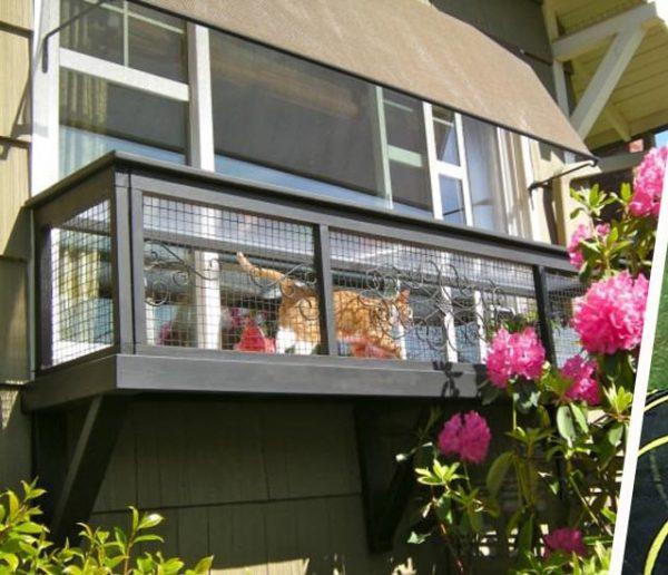 10 idées pour construire un catio : un patio pour votre chat !