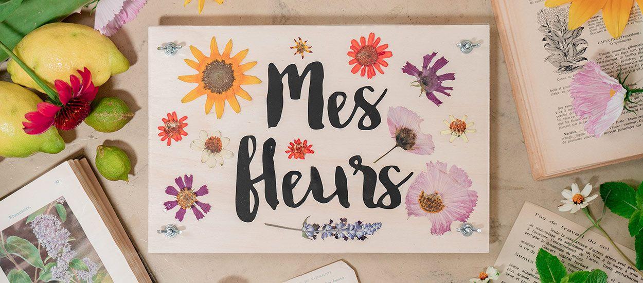 Tuto : Fabriquez cette presse à fleurs séchées, un objet déco à part entière
