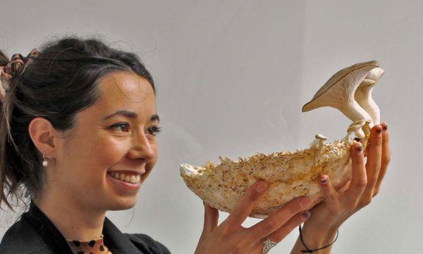 Cette designeuse française veut résoudre la pollution des mégots grâce à un champignon