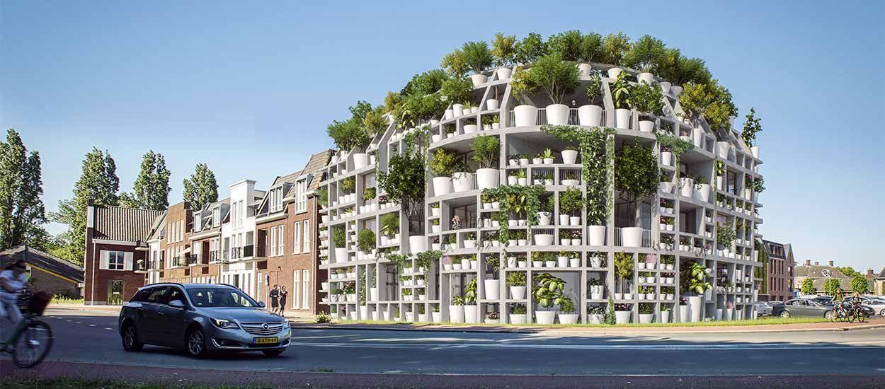 Les façades de cet immeuble seront entièrement couvertes de plantes en pot