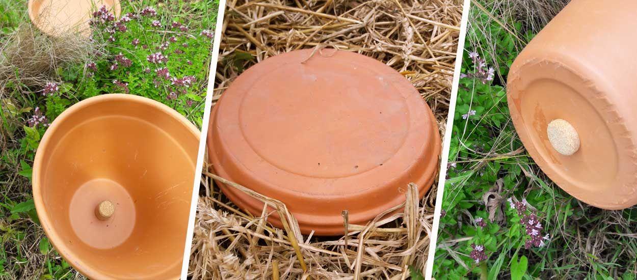 Tuto : Fabriquez des oyas, qui diffusent l'eau dans la terre pour moins arroser votre jardin