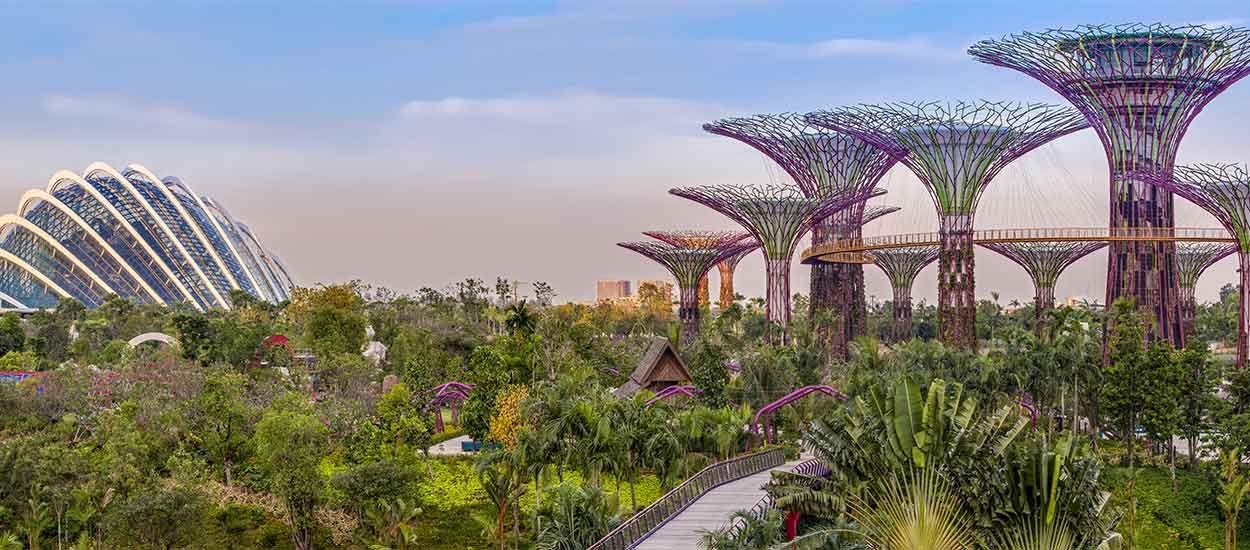Découvrez les extraordinaires jardins futuristes de Singapour