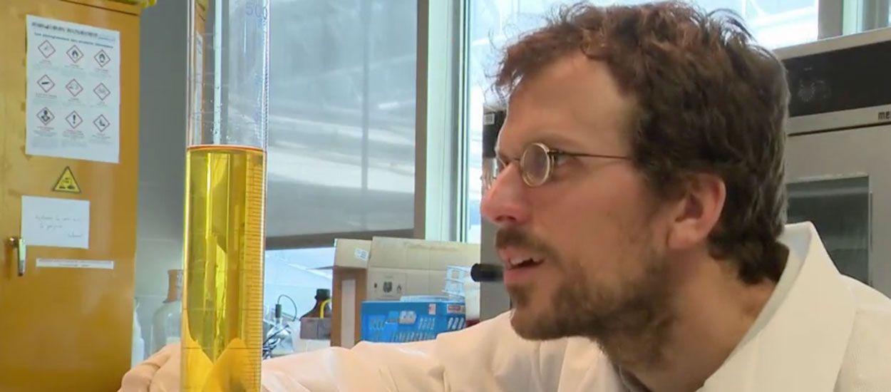 Des scientifiques veulent remplacer les engrais chimiques par de l'urine humaine