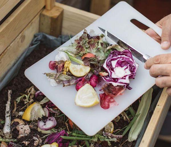 Comment éloigner les mouches et autres insectes indésirables de votre compost ?