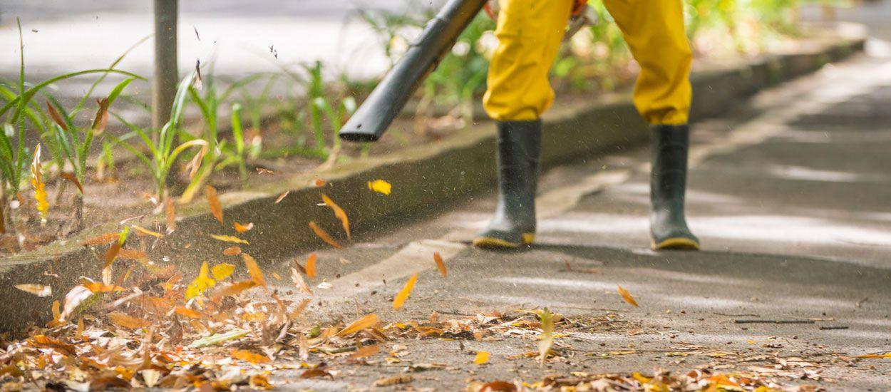 À Amiens, les feuilles mortes chauffent plus de 4000 foyers chaque année