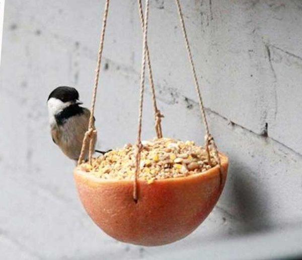 10 adorables mangeoires à fabriquer pour les oiseaux du jardin