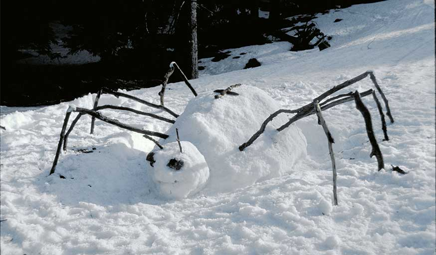 land art dans la neige Andreas Güthler et Kathrin Lacher