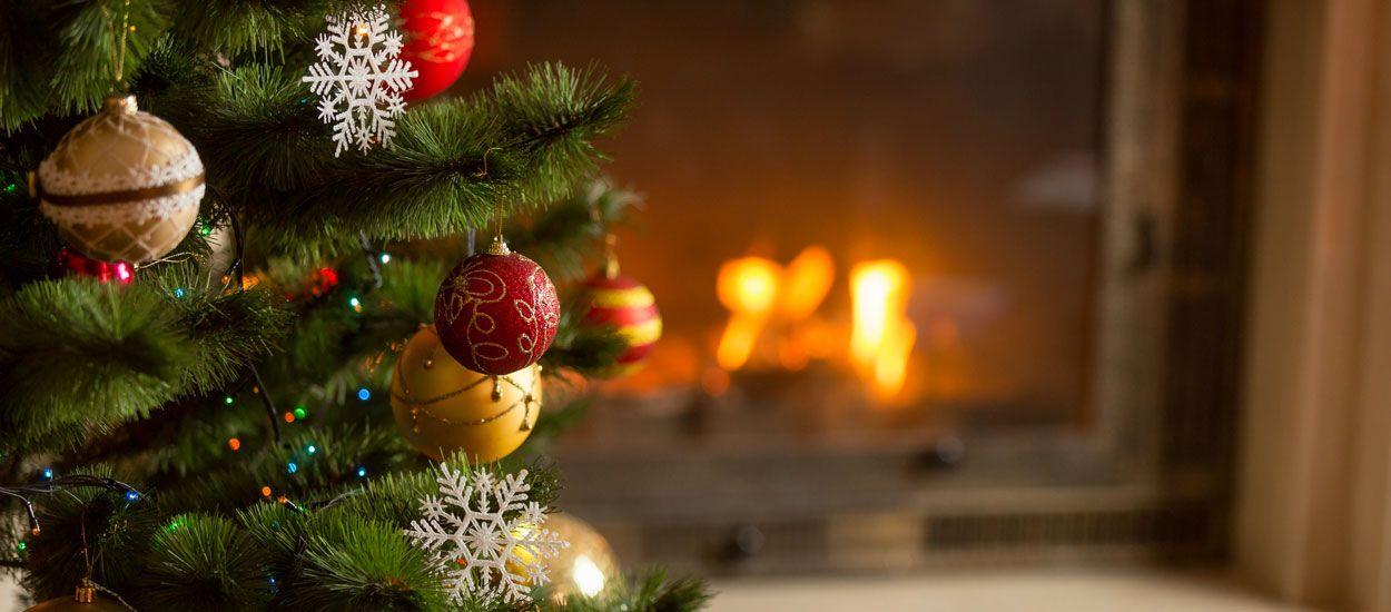 À quel moment acheter un sapin de Noël pour qu'il soit beau jusqu'à la fin des fêtes ?