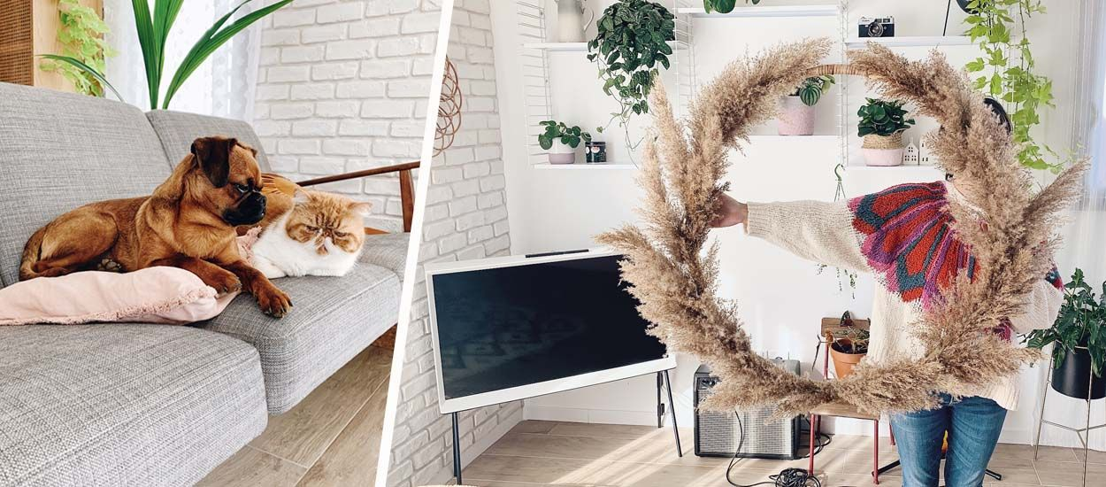 Les bons plans de la blogueuse Zess pour décorer votre appartement (et poster les photos)