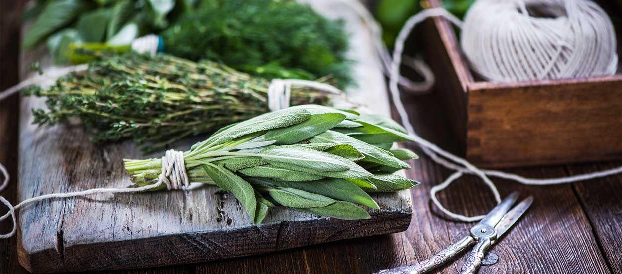Créez votre propre mélange d'herbes aromatiques avec vos plantes du jardin