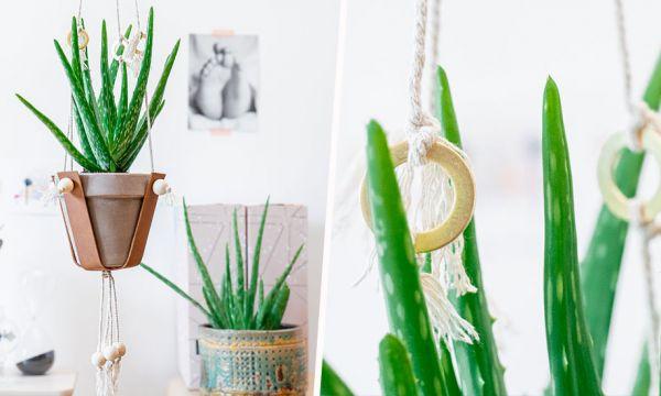 Tuto : Fabriquez une suspension pour plante chic et bohème