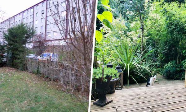 Avant / Après : Cette citadine a transformé son jardin en refuge pour la biodiversité