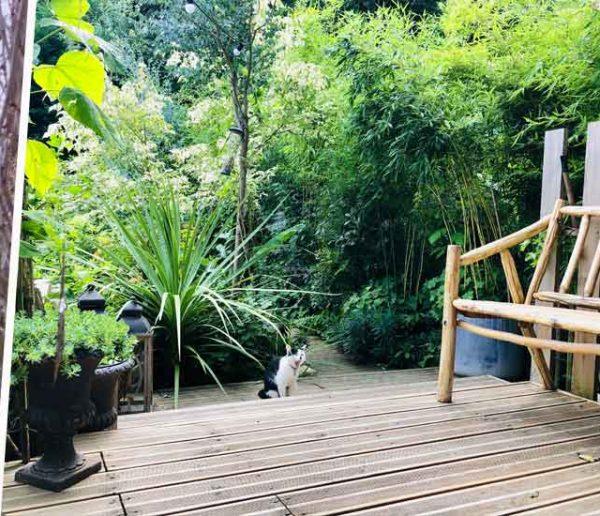 biodiversité-au-jardin