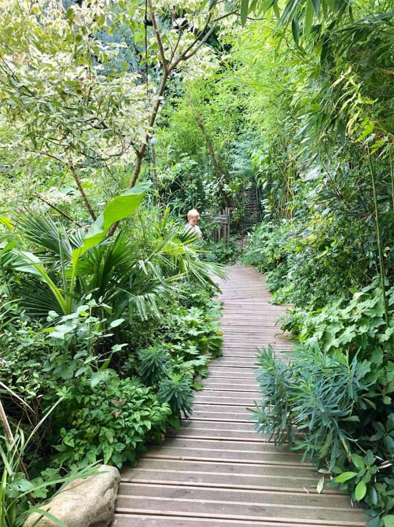 jardin de ville exotique en ville avec terrasse en bois