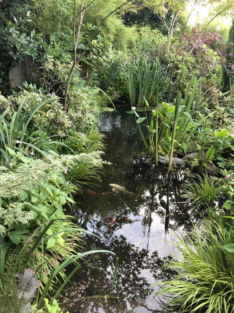 bassin dans un jardin en pleine ville