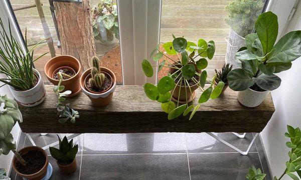Tutoriel : Fabriquez un banc récup' pour vos plantes
