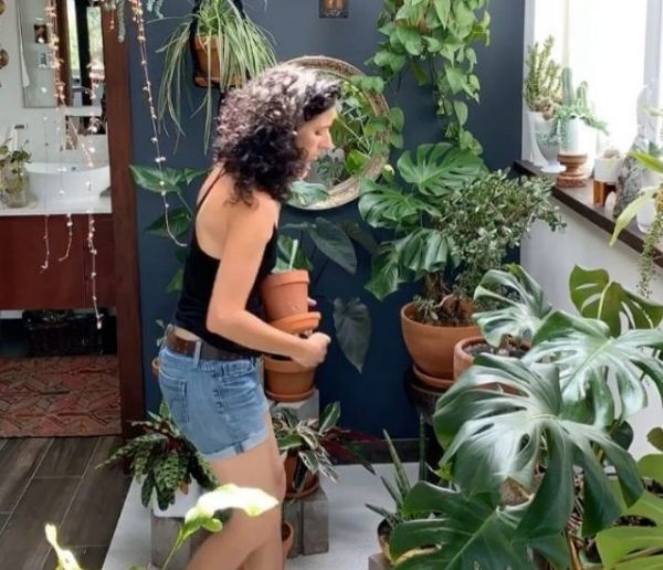 Karina, propriétaire de 200 plantes :