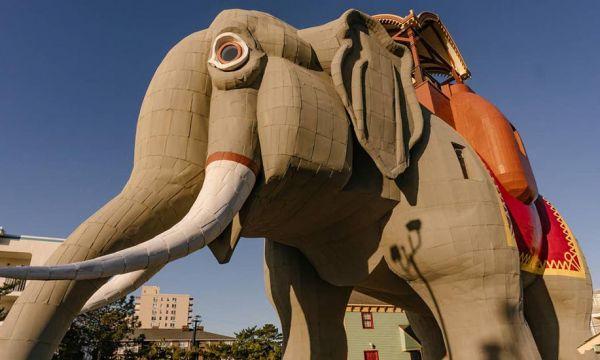 Cet éléphant géant en bois ouvre ses portes pour quelques nuits sur Airbnb