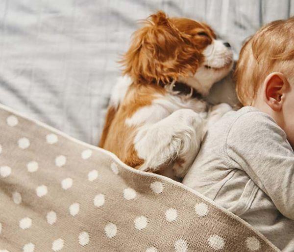 Quelle est la durée de sommeil idéale pour faire une sieste réparatrice ?