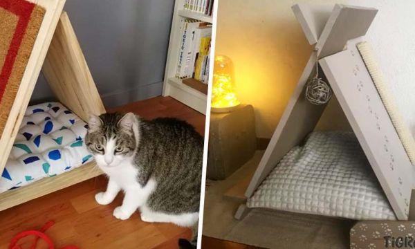 Les 10 plus beaux tipis pour chat réalisés par nos lecteurs