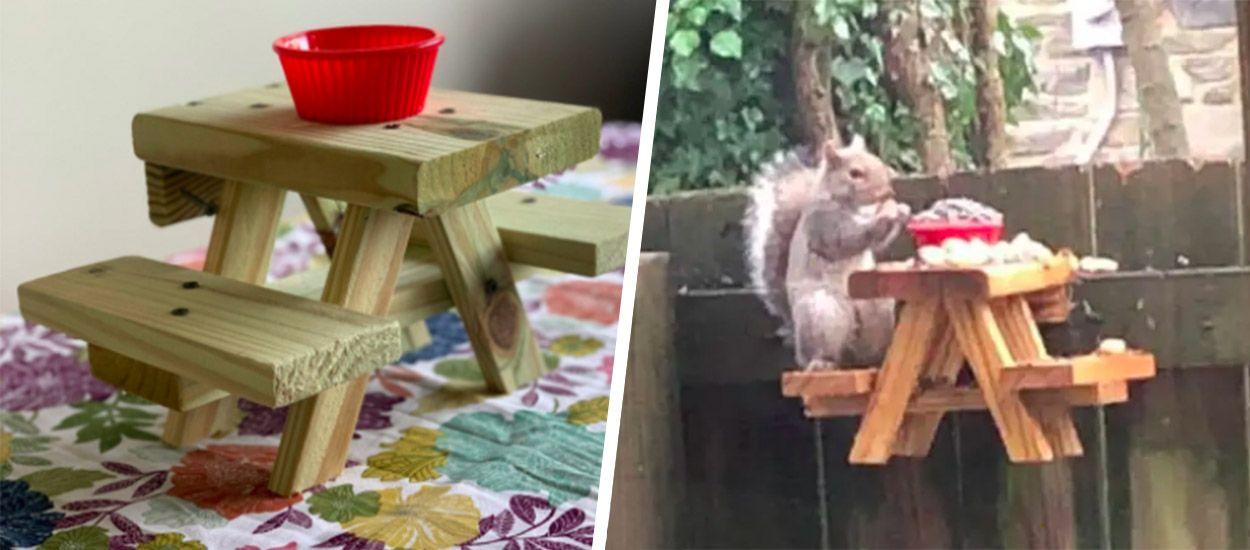 Pour s'occuper, il fabrique une table à pique-nique pour écureuils