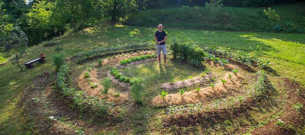 Cette formation en ligne sur la permaculture est gratuite et ouverte à tous