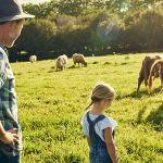 néo ruraux dans un pré avec des vaches