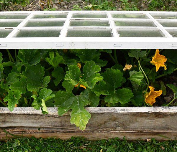 Tuto : Fabriquez une serre à semis avec une fenêtre recup'