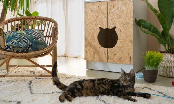 Tuto : Transformez un caisson de cuisine en meuble cache-litière pour votre chat !