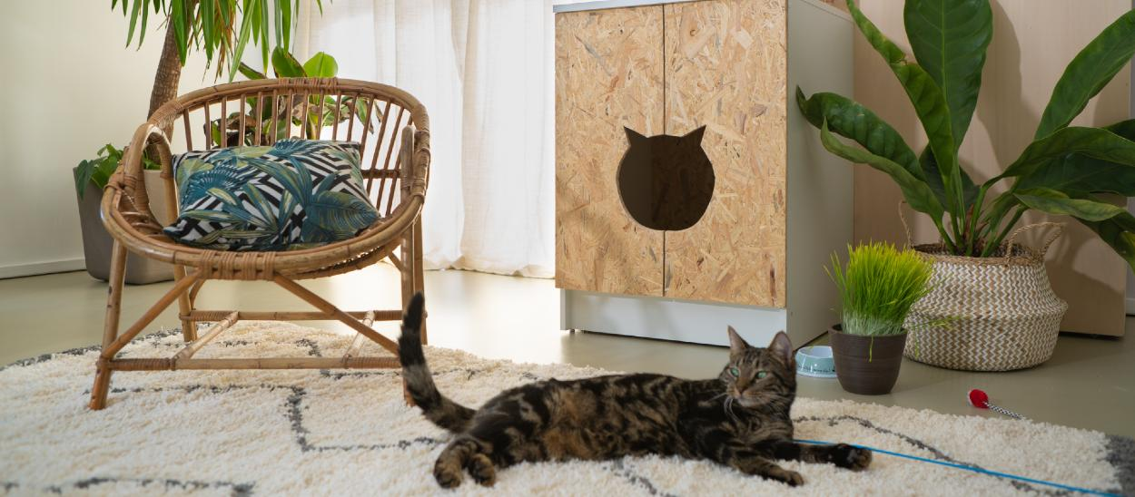 Comment Camoufler La Litiere Du Chat Meuble Diy Pour Chacher La Litiere