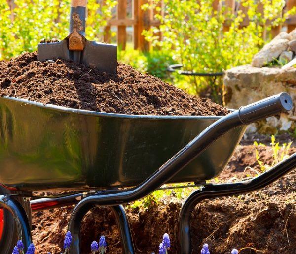 Transformer le jardin quand on est locataires : quels sont vos droits ?
