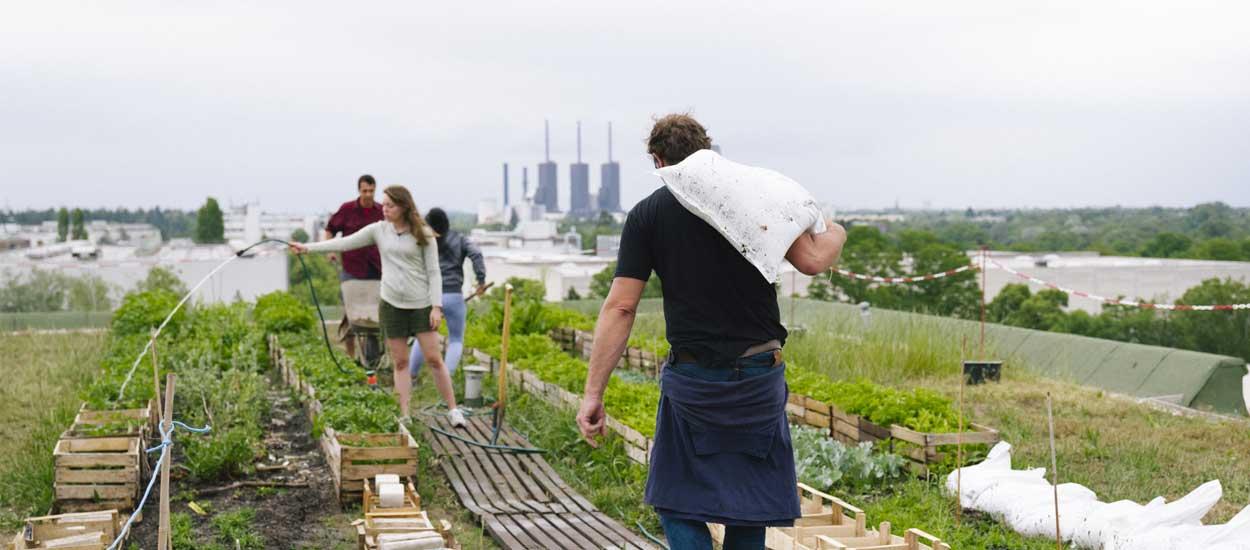 À quoi servent vraiment les fermes urbaines ? La réponse en BD