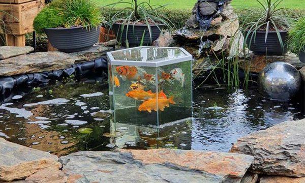 Tuto : Fabriquez une tour à poissons pour embellir votre bassin