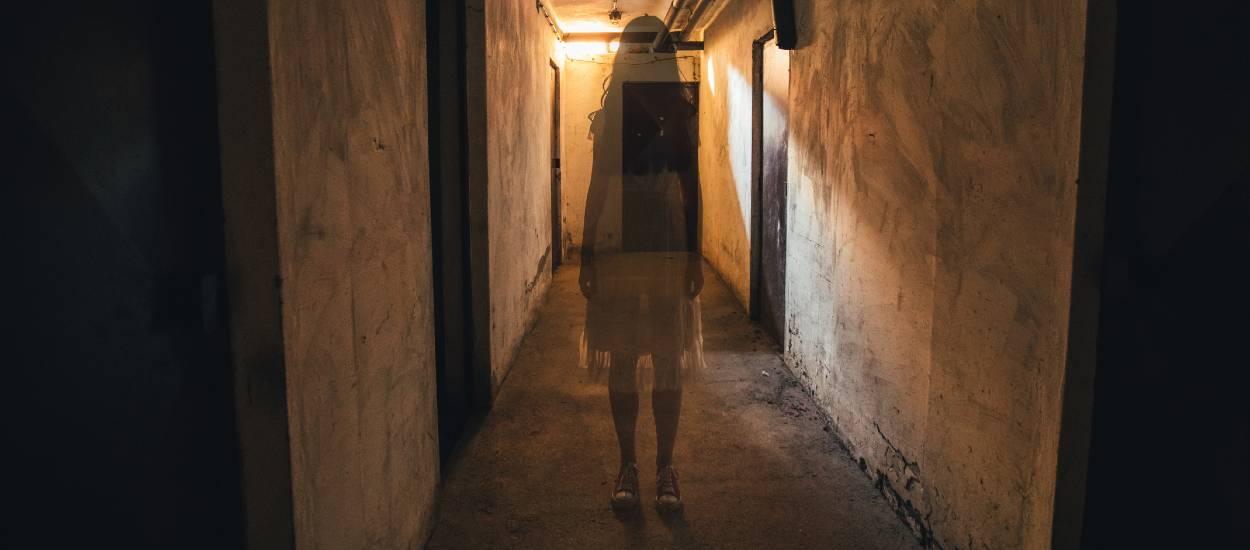 Les fantômes, ça existe vraiment ? Entretien avec un chasseur de fantômes