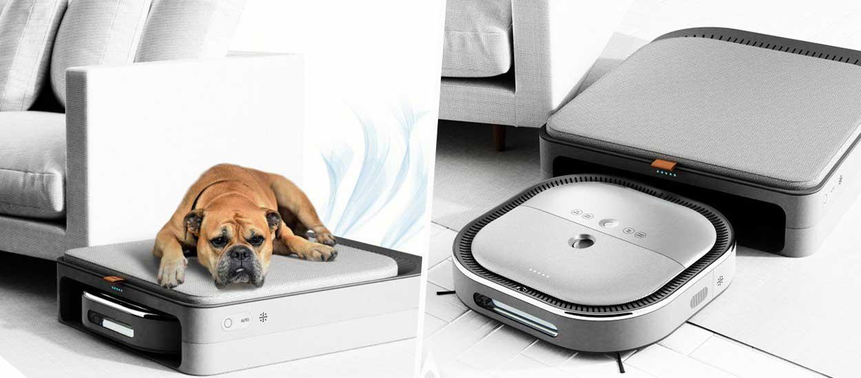 Il a inventé un aspirateur qui s'occupe de votre chien pendant votre absence