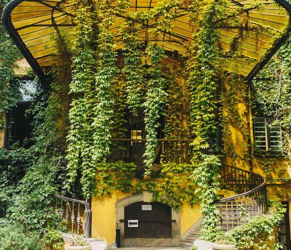 aménagement-jardin