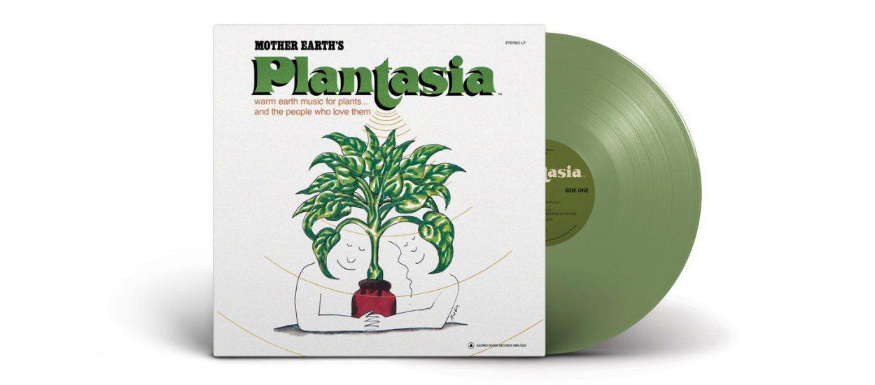 J'ai écouté un disque culte de 1976 qui fait pousser les plantes