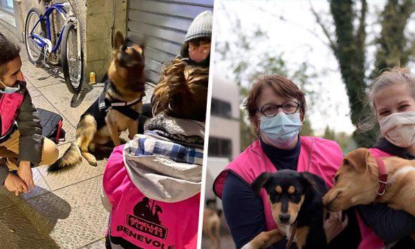 Pour aider les personnes sans-abri à s'en sortir, cette association s'occupe de leurs animaux