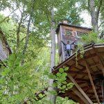 Xavier a construit sa cabane dans les arbres