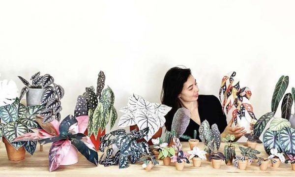 Vous n'avez pas la main verte ? Ces magnifiques plantes en papier font plus vraie que nature