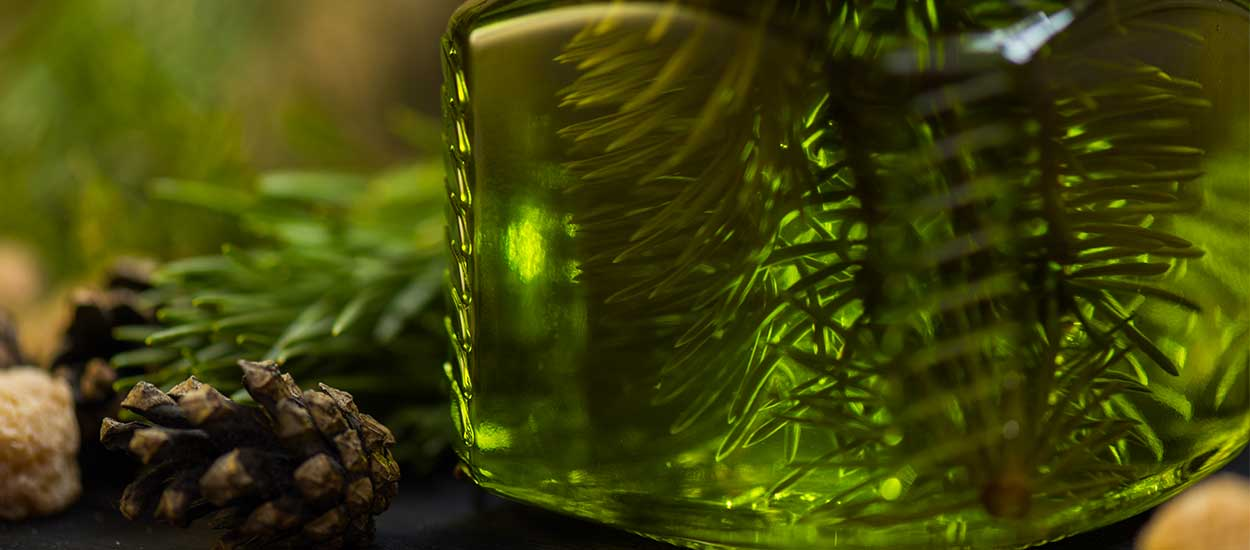 Ménage écolo : fabriquez un nettoyant naturel en recyclant votre sapin de Noël